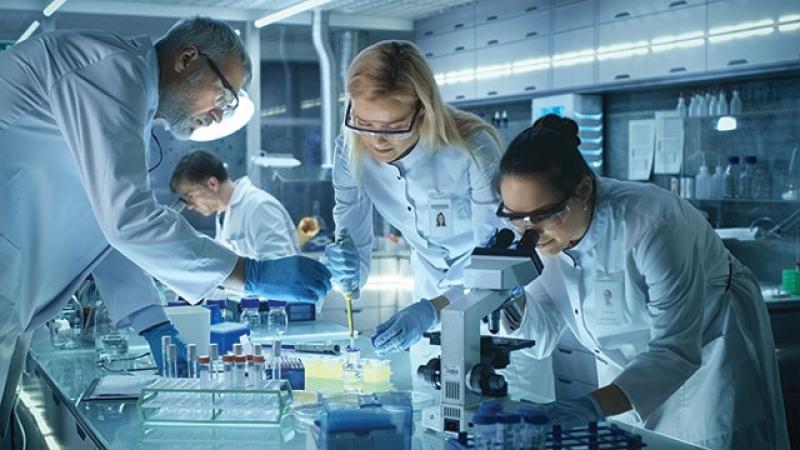 Onde Vende Equipamento para Laboratório Clínico Bocaiúva do Sul - Equipamento para Laboratório de Química